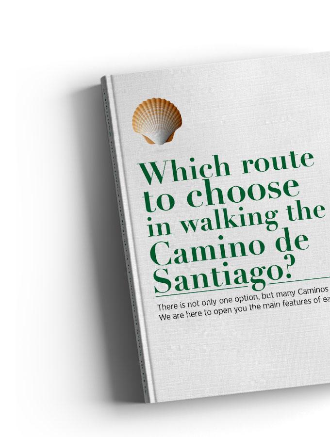 Free camino de santiago ebook for pilgrims living the camino download a free camino de santiago ebook fandeluxe Choice Image