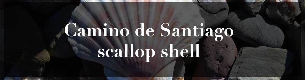 Scallop Shell of Camino de Santiago: what means