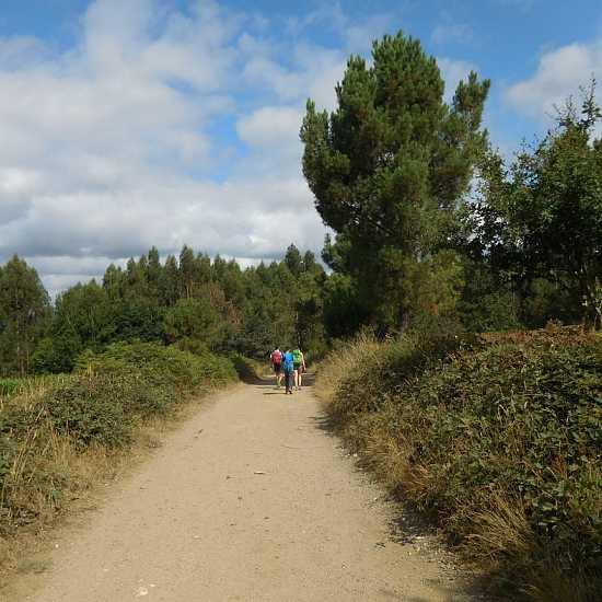 Day 3. Stage 2: San Romao Da Retorta – Melide (27,7 km)