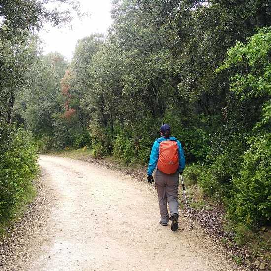 Day 6. Estella - Los Arcos (21,3 Km)