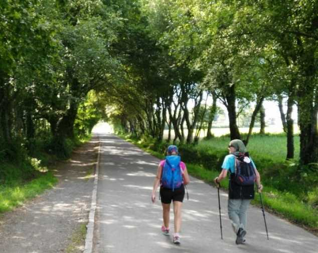 Day 3. Stage 2: Portomarín – Palas de Rei (19,7 km)