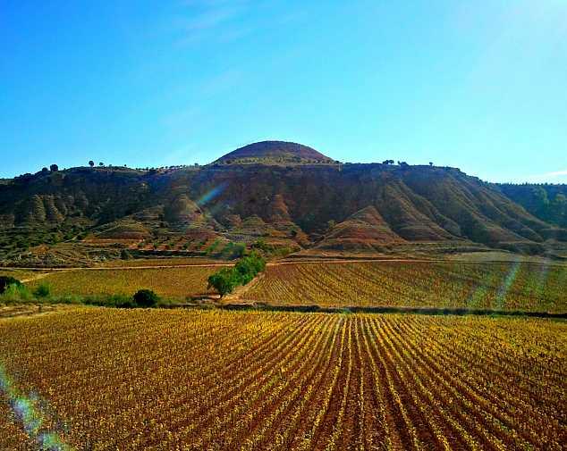 Palas De Rei to Santiago De Compostela (69,9 Km)