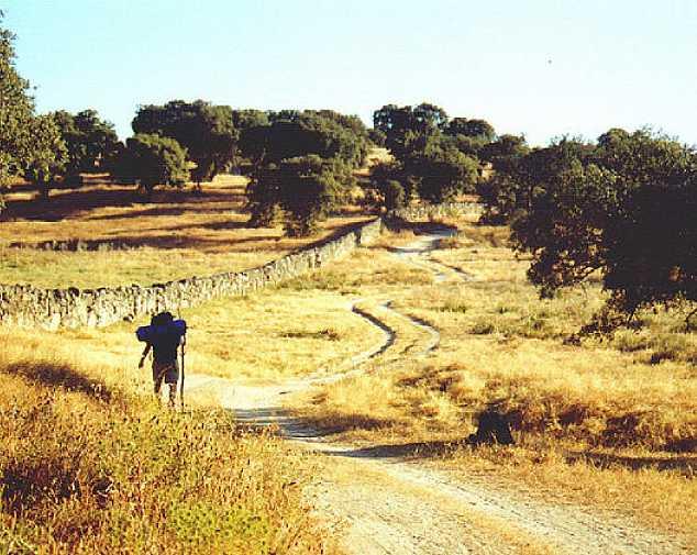 Aljucén - Alcuescar (21km)