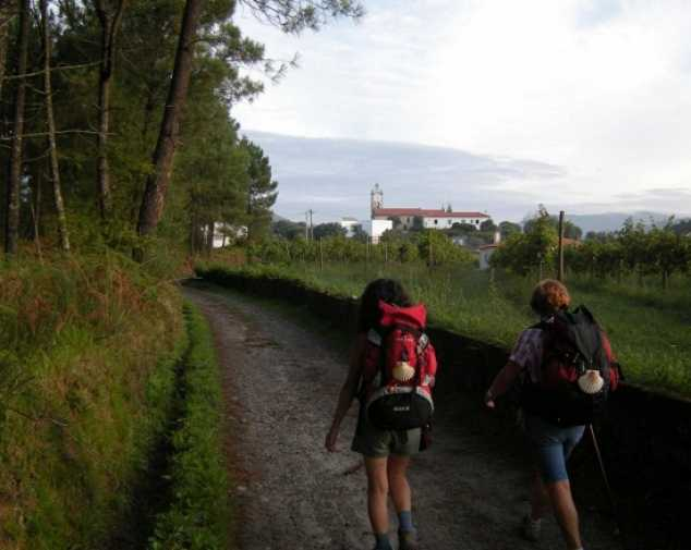 Day 7. Stage 6: Padrón – Santiago de Compostela (24,3 km)