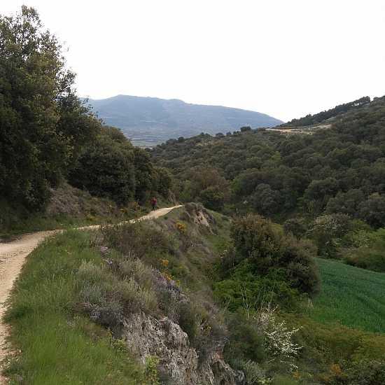 Day 5. Puente La Reina - Estella (21,6 Km)