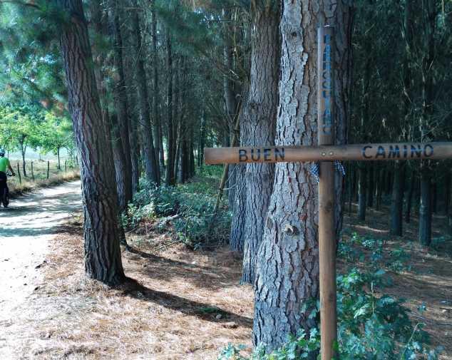 Day 16. Portomarín - Arzúa (53,3 Km)