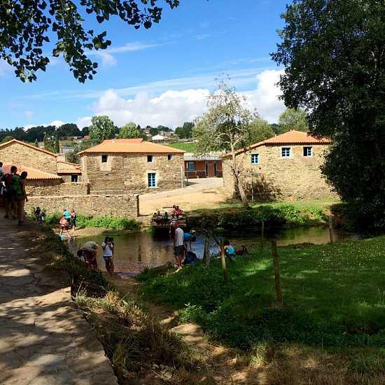 Day 5. Stage 4: Arzúa – O Pedrouzo (19 km)