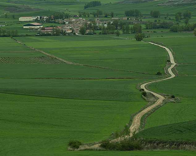Day 2. Burgos - Hornillos del Camino (21 Km)