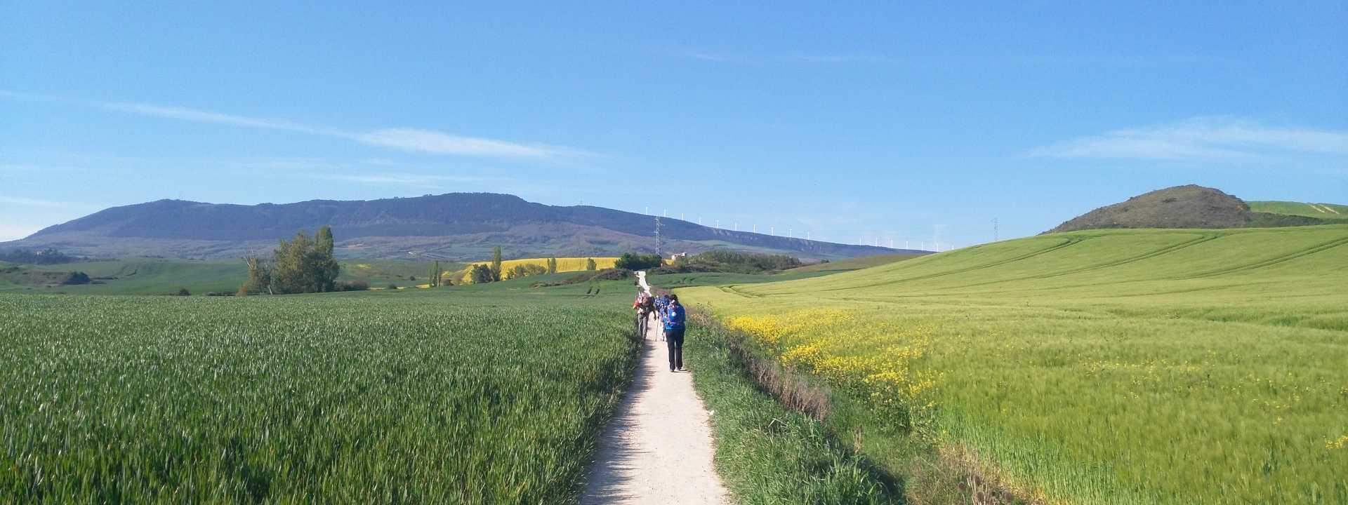 Living the Camino